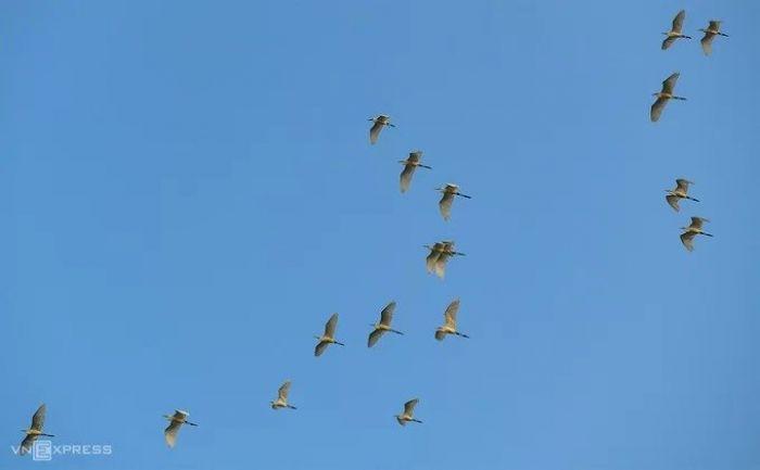 Tà Pạ xanh mướt trong mùa lúa mới - kysudulich.com