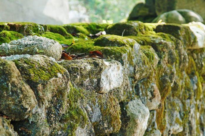 Cùng viến thăm chùa cổ trăm năm tuổi trên đảo Cù Lao Chàm Hội An với Ký Sự Du Lịch