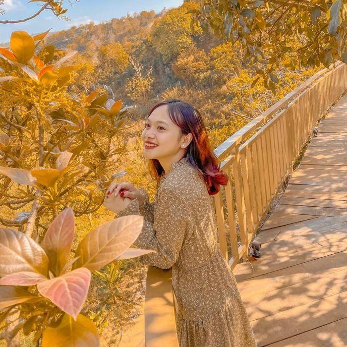 Đường Hàn Quốc và 4 tọa độ mới mở hút khách du lịch Đà Lạt - kysudulich.com