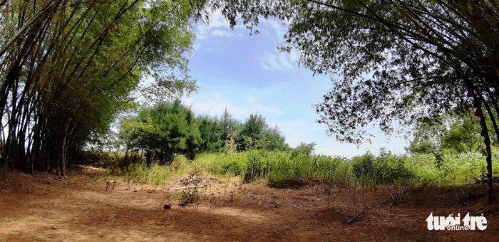 Làng Triêm Tây mát rượi bên sông, cách Hội An chỉ 2km - kysudulich.com