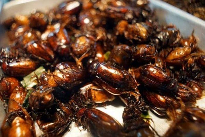 Món ăn ngon, nổi tiếng ở An Giang: An Giang có đặc sản gì ngon, nổi tiếng?