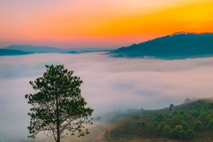 Trải nghiệm săn mây Đà Lạt dành cho người dậy sớm