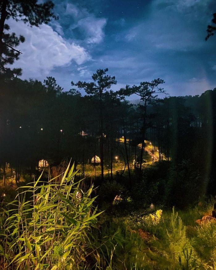 Andante Farm & Lodge - Homestay thơ mộng giữa núi rừng Đà Lạt