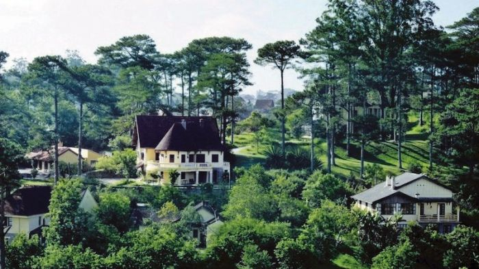 Top 5 khu nghỉ dưỡng giữa rừng cực chất tại Đà Lạt - kysudulich.com